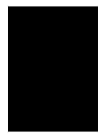 noun_56860_cc